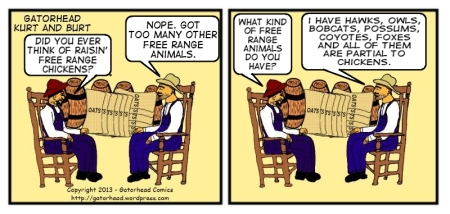 K & B Free Range